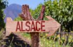 フランス、アルザスワインの特徴を見てみよう!