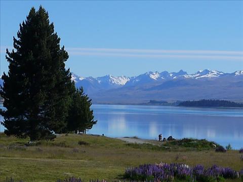ニュージーランド、セントラルオタゴワイン特徴