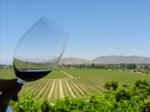 チリワインの中心地マイポ・ヴァレーのワインとは