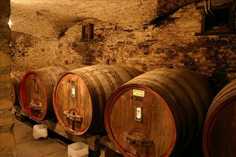 チリ、マイポ・ヴァレーワイン特徴4